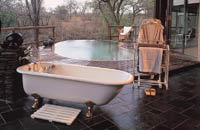 Honeymoon at Singita, Africa