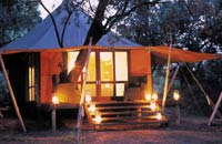 Honeymoon in Kruger National Park, Africa