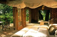 Honeymoon at Lake Manyara, Africa