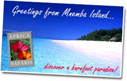 Mnemba Island travel information